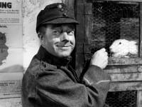 Auch Heinz Rühmann erlangt als Schwejk in Deutschland einigen Ruhm. Böhmakeln konnte er allerdings nicht sonderlich gut. Quelle: Deutsches Filminstitut – DIF e. V.