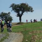 Mountainbike-Tour im Schweinfurter Oberland. Foto: Alexa Swoboda