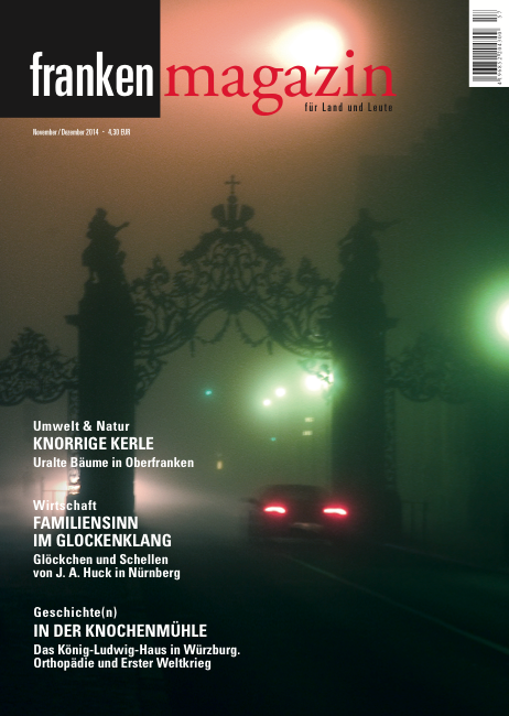 Unser Titelbild zeigt das Oeggtor der Würzburger Residenz in einer nebeligen Winternacht