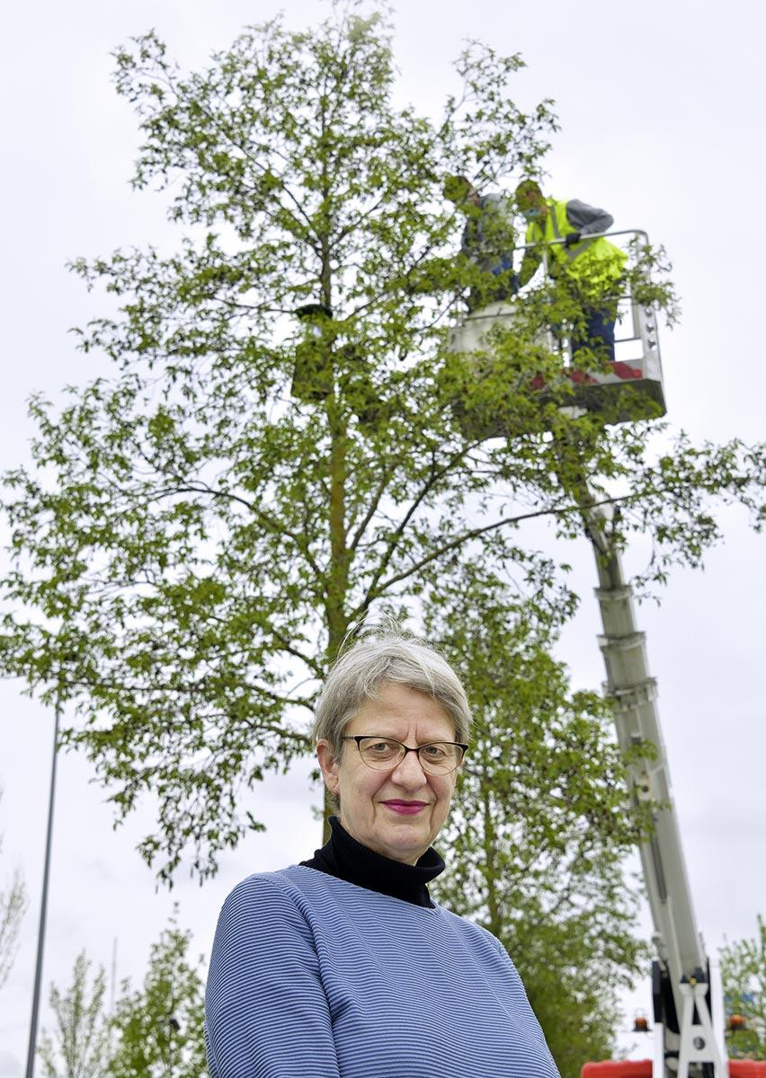 "Dr. Susanne Böll, Projektleiterin ""Stadtgrün 2021"""